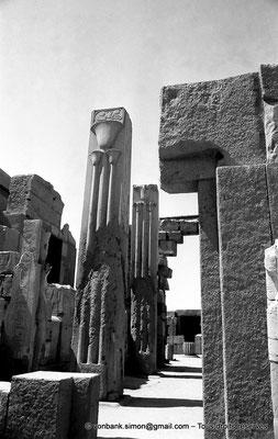 """[NB078-1973-48] Karnak - Ipet-Sout : Piliers héraldiques """"papyrus"""" et """"lys"""""""