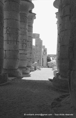 [NB086-1981-19] Ramesseum : Salle hypostyle