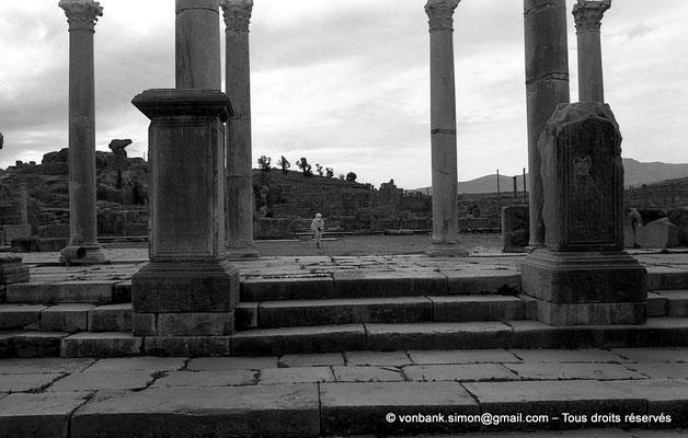[NB042-1978-23] Timgad (Thamugadi) : Marches d'accès au forum