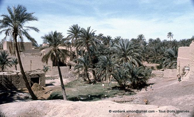 [021-1979-16] Sidi Okba