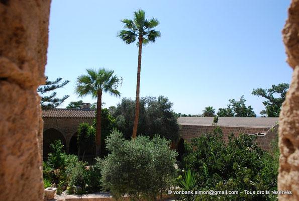 [NU900-2012-0173] Agia Napa : Végétation luxuriante située à l'intérieur de l'enceinte du monastère