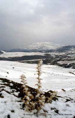 [013-1984-10] de Bouira vers Tikjda