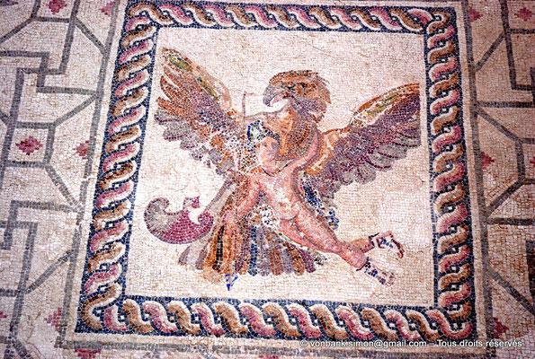 [NU900-2012-061] Paphos (Nea Paphos) : Villa de Dionysos - Rapt de Ganymède [8]