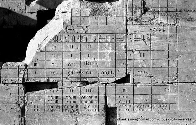 [NB074-1973-14] Karnak - Ipet-Sout : Décompte des butins offerts au temple d'Amon (Annales de Thoutmôsis III)