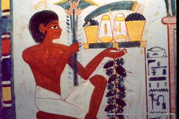 [065-1981-15] TT 52 Nakht : Porteur d'offrandes (Registre supérieur gauche du mur Sud de la salle transversale)