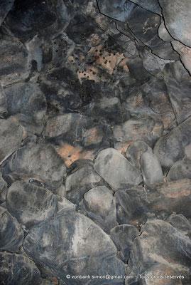 [NU904-2015-114] Nuraghe Majori (Sardaigne) : Chambre couverte en fausse coupole abritant une colonie de petites chauve-souris (Rhinolophus hipposideros)