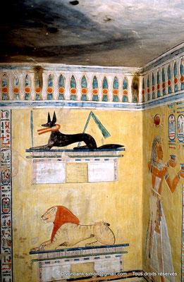 [066-1981-17] QV 44 Khaemouaset : Demeure d'Osiris (détail) - Anubis - ?