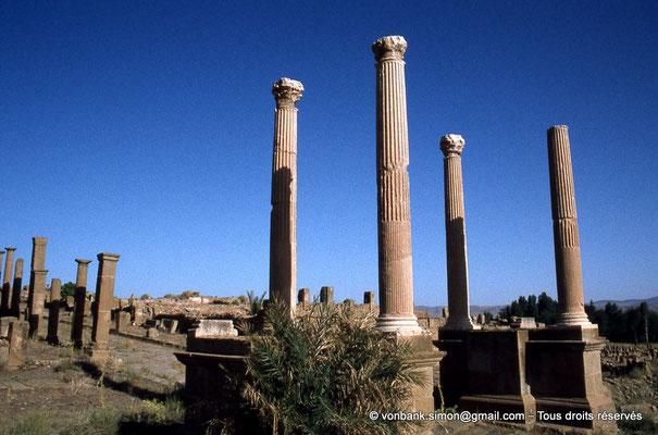 [010-1978-12] Timgad (Thamugadi) : Porte de Mascula (extrémité Est du Decumanus maximus)
