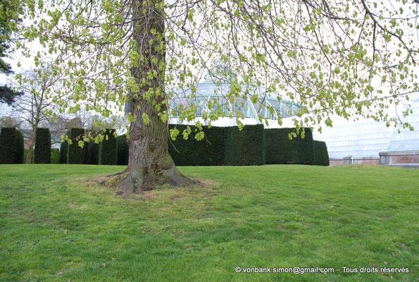 [NU900c-2012-0082] B - Bruxelles - Laeken : le Parc