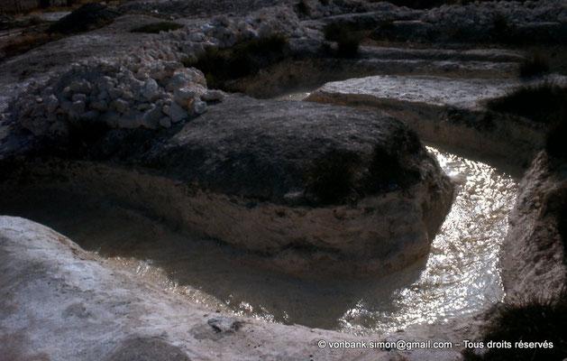 [022-1980-62] Hammam Meskoutine (Aquae Thibilitanae) : Ecoulements des eaux chaudes