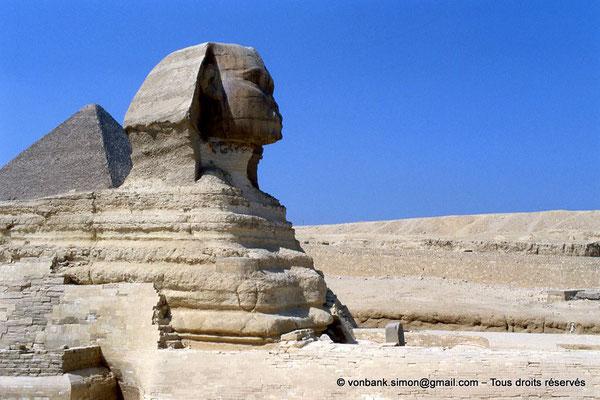 [068-1981-08] Gizeh - Grand sphinx : Le Sphinx érodé avec entre ses pattes (le haut de) la stèle de Thoutmosis IV - En arrière-plan, la pyramide de Khéops