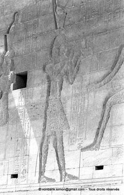 [NB076-1973-23] Philae : Temple d'Isis - Détail de la partie supérieure de la façade du Pylône 1