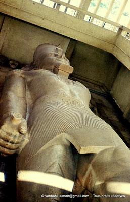 [080-1973-19] Memphis : Statue colossale de Ramsès II