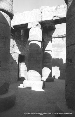 [NB075-1973-06] Karnak - Temple de Ramsès III : Colonnes de la salle hypostyle