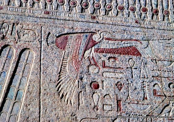 [080-1973-17] Karnak - Ipet-Sout : Détail - Vautour (Chapelle de Philippe Arrhidée, face Sud)