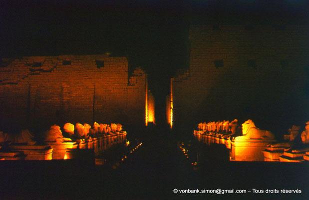 [081-1973-10] Karnak - Son et lumière : Parvis du Temple - Dromos de sphinx à tête de bélier (criocéphale)