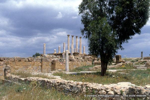 [009-1985-02] Henchir Kasbat (Thuburbo Majus) : Le Capitole et ses quatre colonnes