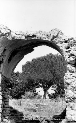 [NB039-1978-23] Tipasa de Maurétanie : Columbarium