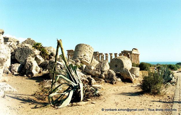 [C003-2005-03a] Sélinonte - Temple G : Ruines - En arrière-plan, le temple E (faces Ouest et Nord)