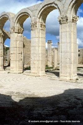[005-1984-08] Makthar (Mactaris) : Grands thermes du Sud-Est - Frigidarium - En arrière-plan, Palestre Nord-Est