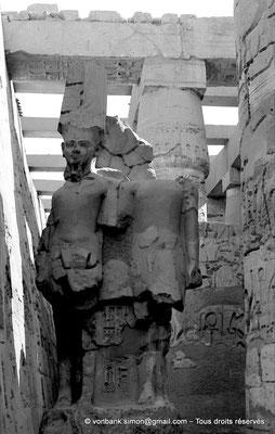 [NB075-1973-20] Karnak - Salle hypostyle : Double statue d'Amon et de Ramsès II