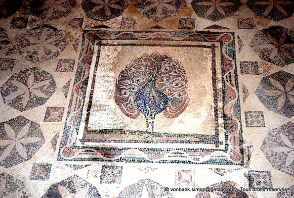 [NU900-2012-051] Paphos (Nea Paphos) : Villa de Dionysos - Mosaïque du Paon [16]