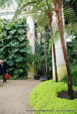 [NU900c-2012-0066] B - Bruxelles - Laeken : Serres royales - Jardin d'hiver