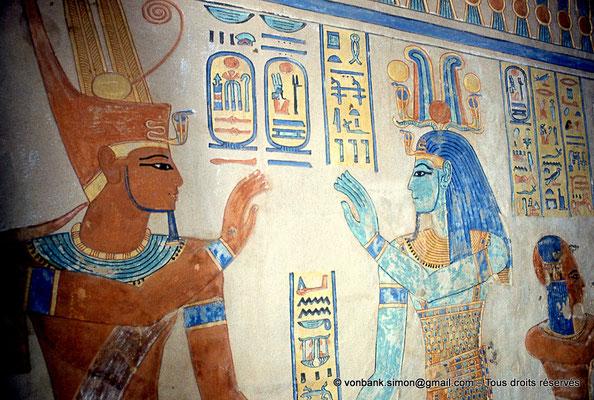 [080-1981-45] QV 55 Amonherkhépshef : Ramsès III - Ptah-Taténen