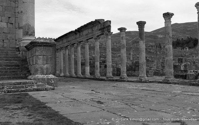 [NB033-1978-02] Djemila (Cuicul) : Basilique judiciaire (à proximité du Temple Septimien)