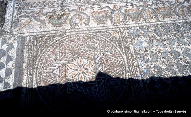 [072-1978-11] Annaba (Hippo Regius) : Mosaïques géométriques