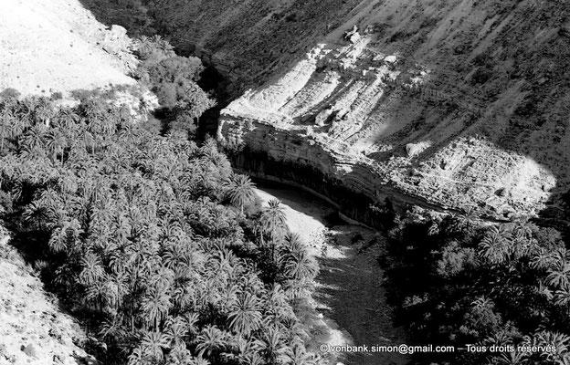 [NB089-1978-41] Massif de l'Aurès