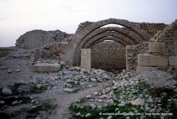 [004-1983-05] Ksour Abd el Malek (Uzappa) : Vastes salles ayant conservé leurs arceaux et une partie de leurs voûtes