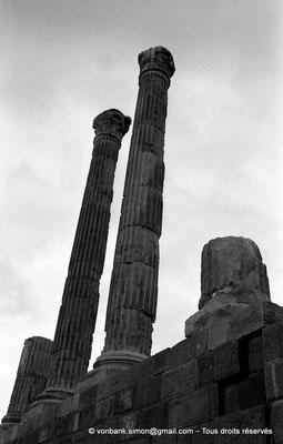 [NB024-1978-43] Timgad (Thamugadi) : Le Capitole