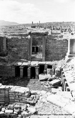 [NB047-1978-56] Timgad (Thamugadi) : Les grands thermes du Sud - Caldarium : Baignoire et hypocauste avec accès au Laconicum