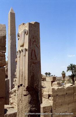 """[068-1981-25] Karnak - Ipet-Sout :  Le """"lys"""", la plante héraldique de Haute-Égypte (Thoutmôsis III) - En arrière-plan l'obélisque d'Hatchepsout"""