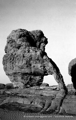 [NB102-1980-105] DZ - Tamanrasset - Hoggar