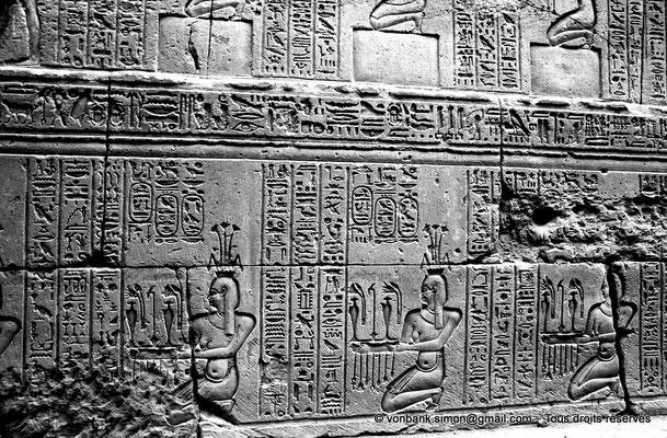 [NB070-1973-48] Karnak - Temple d'Opet : Procession de Nils - Auguste (soubassement de la façade extérieure Est (registre Nord))