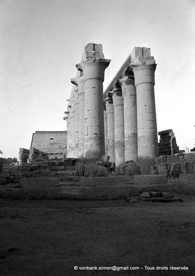 [NB079-1973-22] Louxor - Temple d'Amon-Rê : Colonnade de 14 colonnes papyriformes à chapiteaux ouverts de 14 mètres de hauteur (Aménophis III)
