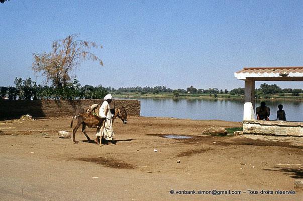 [081-1973-00] Louxor : le Nil