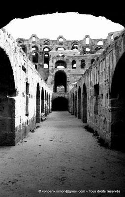 [NB012-1981-12] El Djem (Thysdrus) : Amphithéâtre - Cellules souterraines