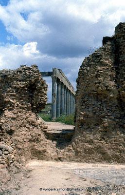 [009-1985-07] Henchir Kasbat (Thuburbo Majus) : Portique de la Palestre des Petronii vu depuis les thermes d'été