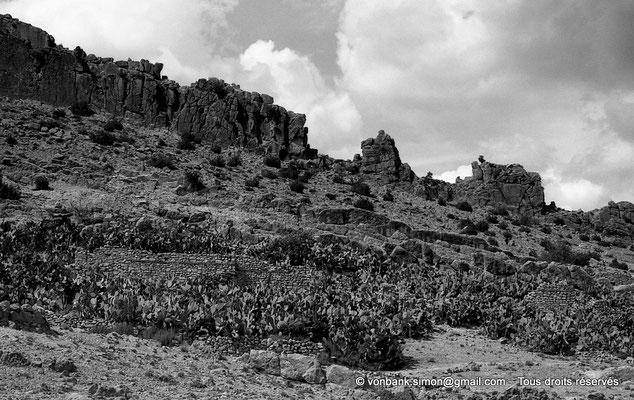 [NB018-1981-03] Massif de l'Aurès
