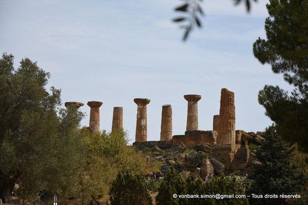 [NU906-2019-1598] Agrigente - Temple d'Héraclès (Hercule) : En arrière-plan, colonnes de la face Sud (vue depuis le temple de Zeus Olympien)