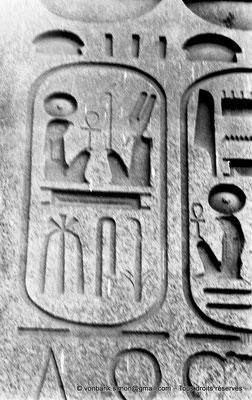 [NB074-1973-66] Louxor - Temple d'Amon-Rê : Cartouche pharaonique (titulature de Ramsès II - Obélisque)