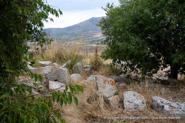 [NU906-2019-1320] Ségeste - Théâtre : Ruines éparses à proximité de la partie orientale du soubassement du mur de scène