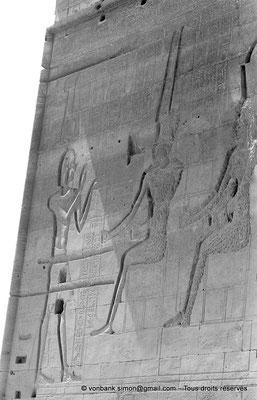 [NB076-1973-21] Philae : Temple d'Isis - Détail de la partie supérieure de la façade du Pylône 1