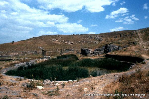 """[022-1980-60] Khemissa (Thubursicu Numidarum) : Nymphée - Bassin en """"fer à cheval"""" puis, dans son prolongement, le bassin rectangulaire et ses constructions"""