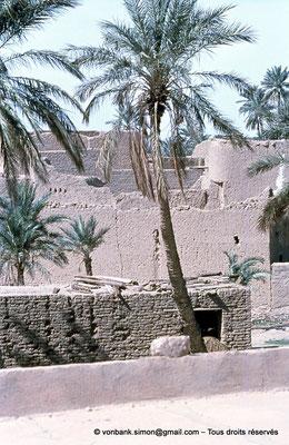 [021-1979-18] Sidi Okba
