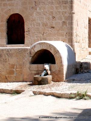 [NU900-2012-0153a] Agia Napa : Fontaine en forme de tête de verrat