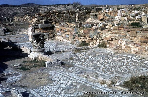 [017-1978-14] Henchir Kasbat (Thuburbo Majus) :  Quartier des maisons romaines - mosaïques -